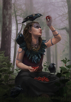 Crow Clan Druid